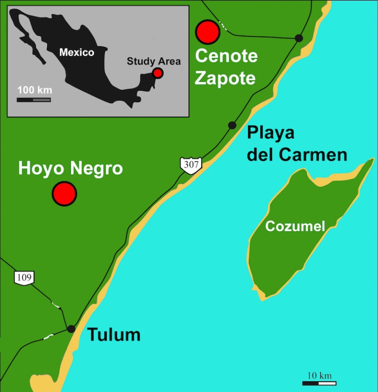Figure 1 Cenote Map.jpg